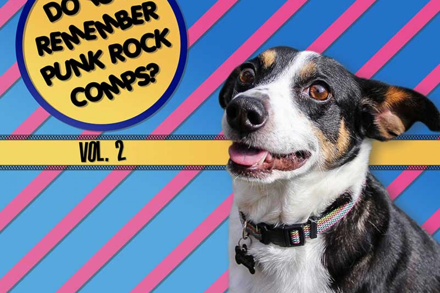 PREMIERE: Hidden Home Records shares free comp 'Do You Remember Punk Rock Comps? Vol. 2'