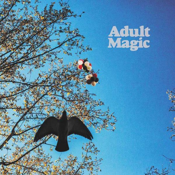 Adult Magic Adult Magic Punk Rock Theory
