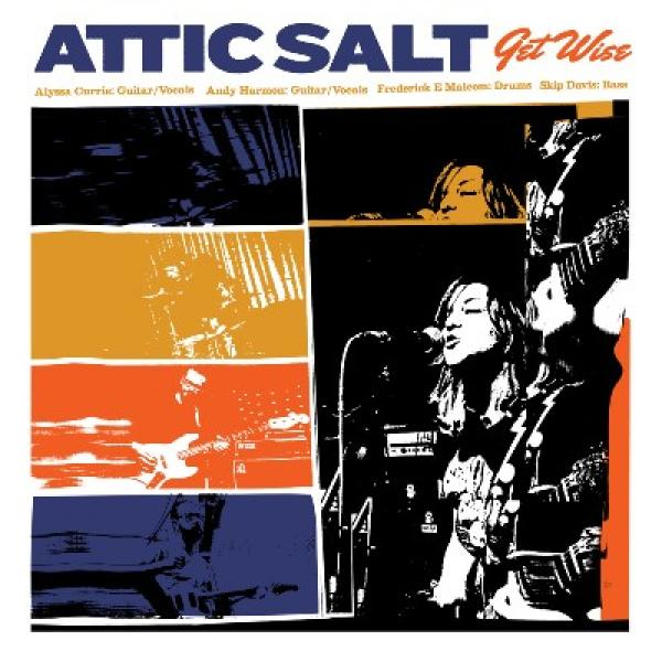 Attic Salt Get Wise Punk Rock Theory