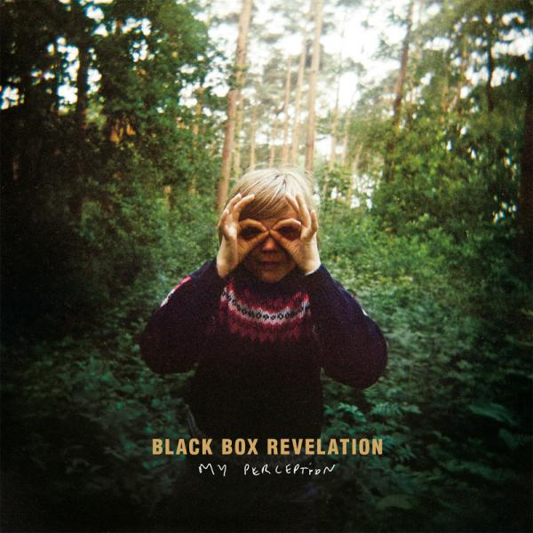 Black Box Revelation - My Perception