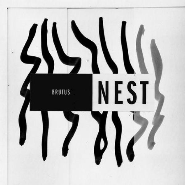 Brutus Nest Punk Rock Theory