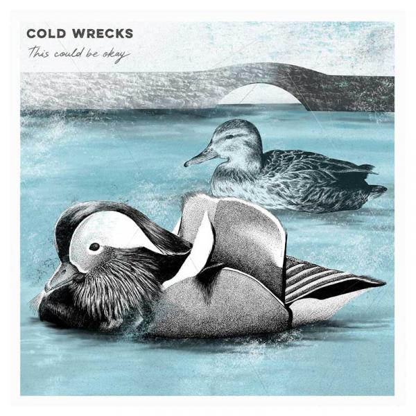 Cold Wrecks This Could Be Okay Punk Rock Theory