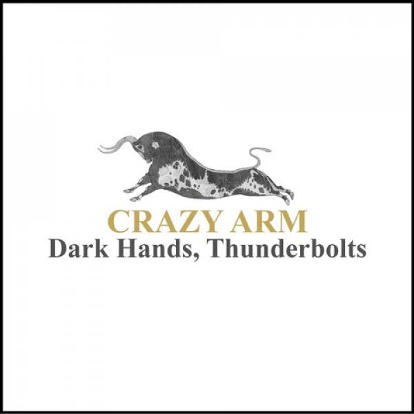 Crazy Arm Dark Hands Thunderbolts Punk Rock Theory