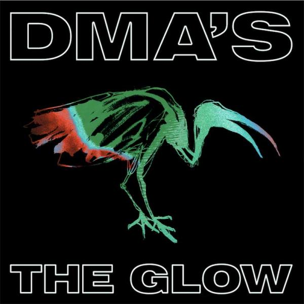 DMA's The Glow Punk Rock Theory