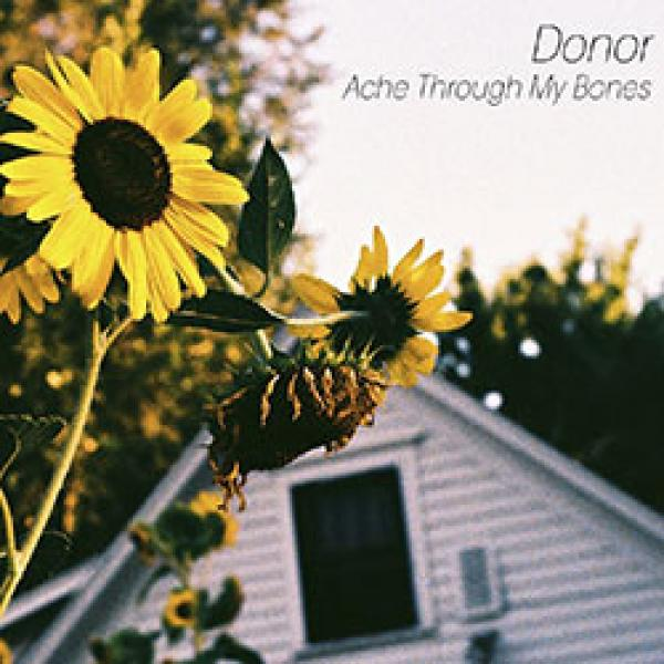 Donor – Ache Through My Bones