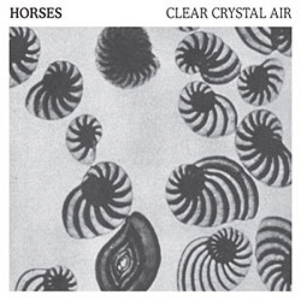 Horses – Clear Crystal Air