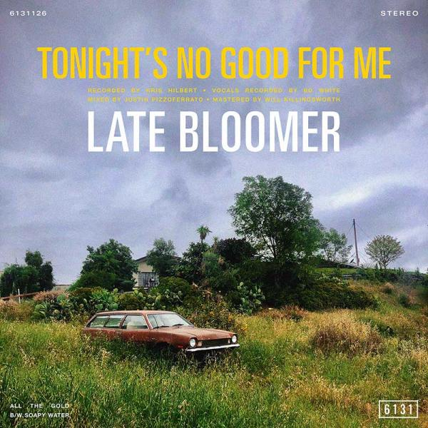Late Bloomer Tonight's No Good For Me Punk Rock Theory