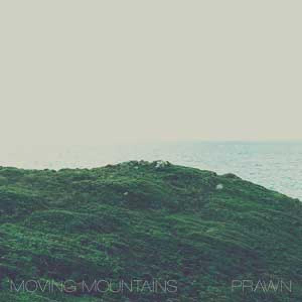 Moving Mountains / Prawn split