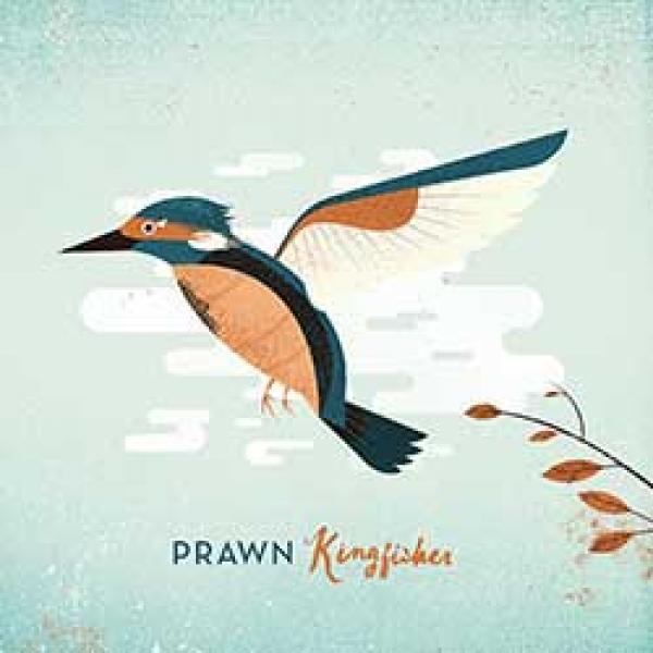 Prawn – Kingfisher