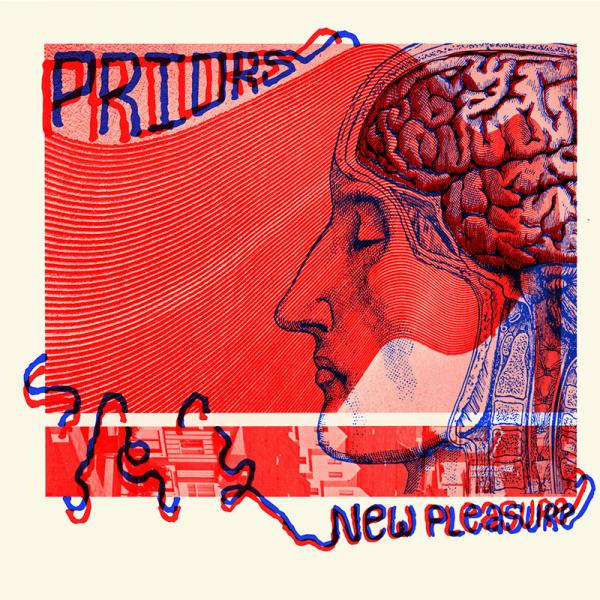 Priors New Pleasure Punk Rock Theory