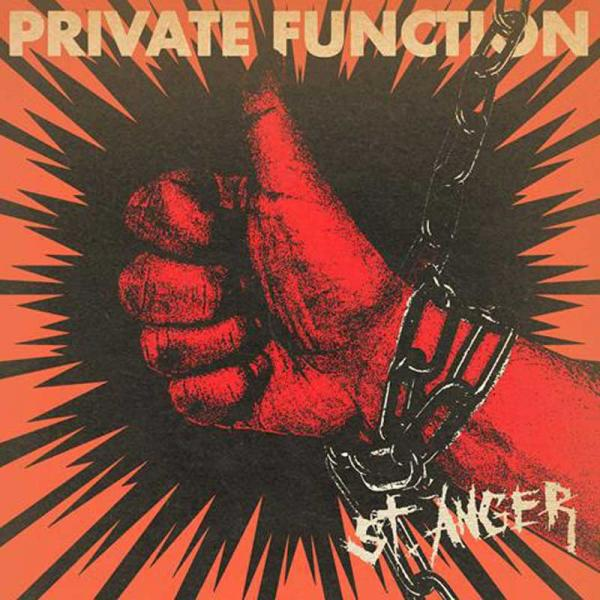 Private Function St. Anger Punk Rock Theory