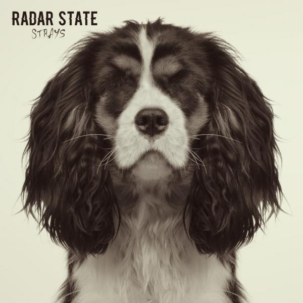 Radar State Strays Punk Rock Theory