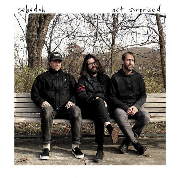 Sebadoh Act Surprised Punk Rock Theory
