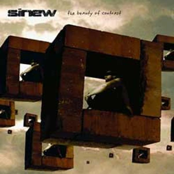 Sinew – The Beauty Of Contrast