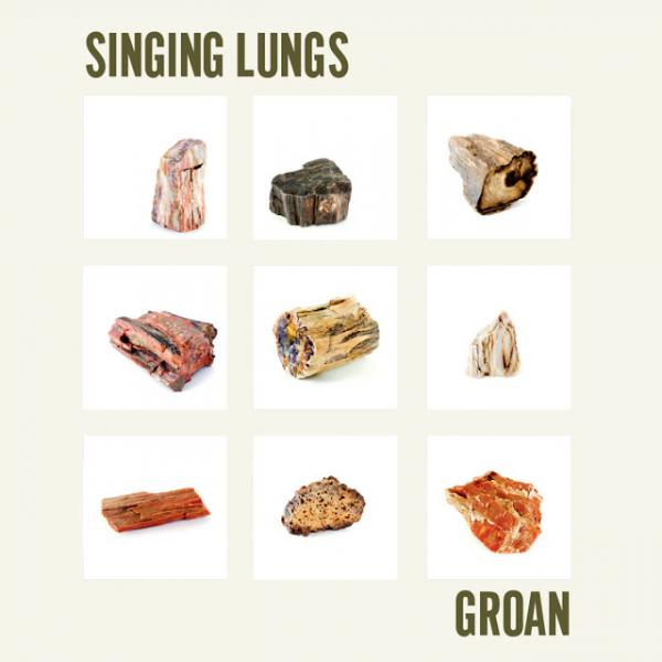 Singing Lungs Groan Punk Rock Theory
