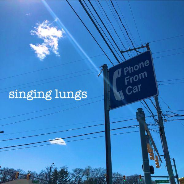 Singing Lungs Phone From Car Punk Rock Theory