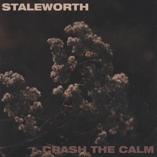 Staleworth / Crash The Calm Split