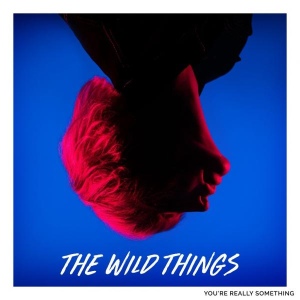 The Wild Things You're Really Something Punk Rock Theory