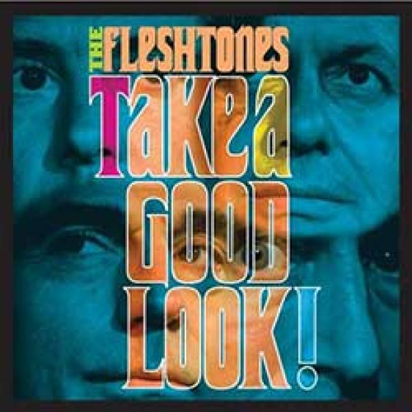 The Fleshtones - Take A Good Look